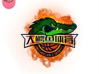 大鳄鱼篮球羽毛球培训(铁路体育馆店)
