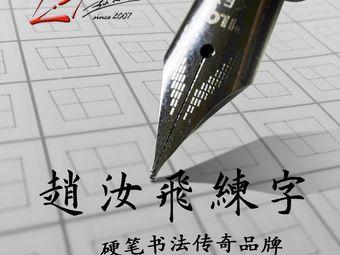 赵汝飞练字(英才路盛唐至尊总校)