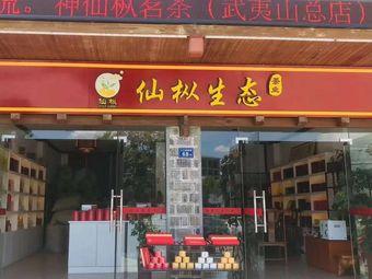 仙枞生态茶业