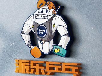 派乐乒乓SCD-TT(三林店)