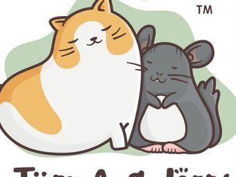 Tom And Jerry ·CFA注册猫舍·龙猫馆