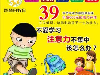 智慧田·儿童感统专注力学习能力