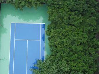 拓辰青少儿网球(环湖花园基地)
