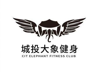 城投大象健身