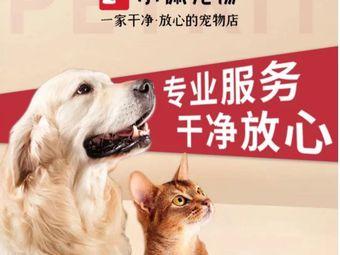 PETKIT小佩宠物(状元红路店)