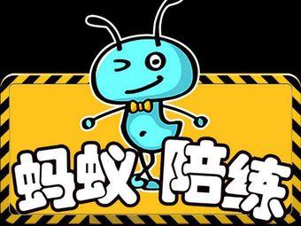蚂蚁有证练车