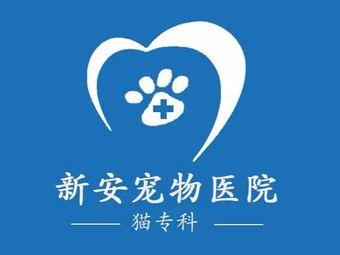 新安宠物医院·猫专科
