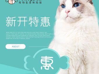 PetSugar倍甜寵物生活館(巴黎春天店)