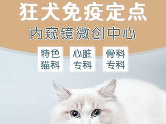 金民宠物医院·猫科中心·内窥镜中心·心脏科中心