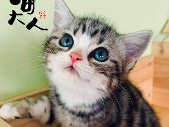 喵大人·撸猫馆·CFA猫舍(普陀店)
