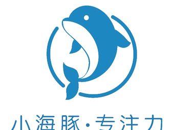 小海豚注意力训练中心