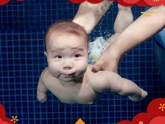 艾贝瑞国际亲子游泳(高新校区)