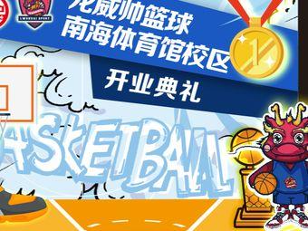 龙威帅篮球培训(南海体育馆校区)