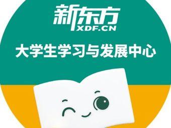 新东方考研四六级(学府校区)