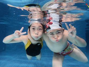 小猪兜兜婴幼儿游泳俱乐部