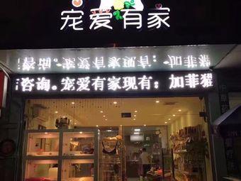 宠爱有家(叠彩区九华店)