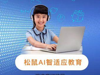 松鼠AI智适应教育(双流棠湖校区)