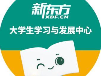 新东方考研·四六级·专升本(大学城校区)