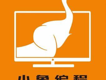 小象编程(新都汇校区)