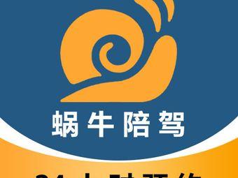 郑州蜗牛汽车陪驾(总部)