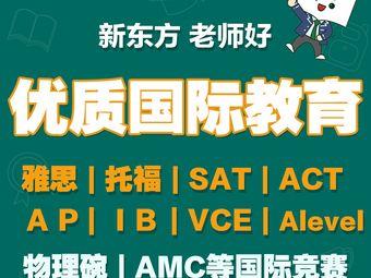 新东方国际部·国际教育(和平天津中心校区)