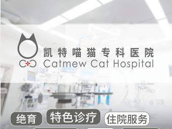 凯特喵猫专科医院(望月路店)
