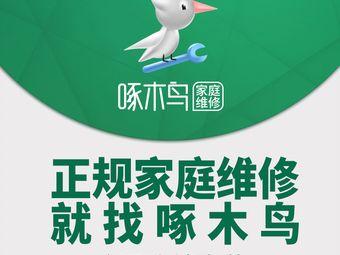 啄木鸟家庭维修(道外店)