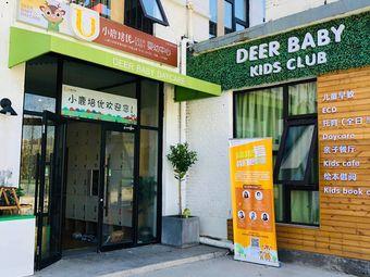 小鹿培优婴幼中心(北京豆各庄店)