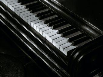 心心音乐教育