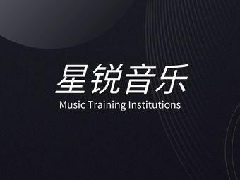 星锐音乐培训唱歌DJ培训(观前店)