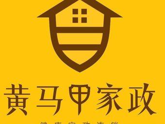 黄马甲健康家政(惠阳总部)
