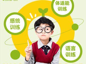 早慧树儿童感觉统合体能训练中心(市北校区)