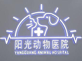 阳光动物医院