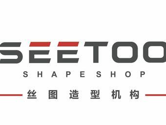 SeeToo丝图造型机构
