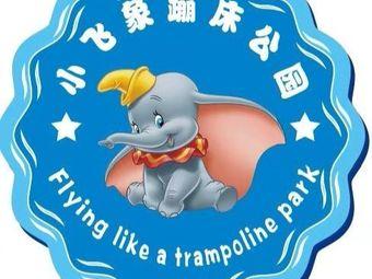 小飞象蹦床公园