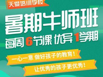 天爱培训学校中小学全科教育(五大道校区)
