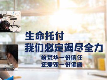 梵華寵物醫院·CT·彩超·內窺鏡·腫瘤熱消融(世博店)