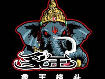 象王搏击运动馆
