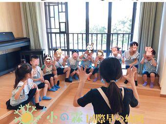 小霖国际早幼园•早教幼儿园(奥园校区)