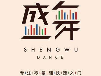 盛舞舞蹈(锦江店)