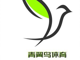 青翼鸟网球俱乐部(仙林校区)