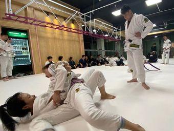 SK2拳柔综合格斗