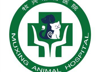 牧兴动物医院外科中心(新石店)