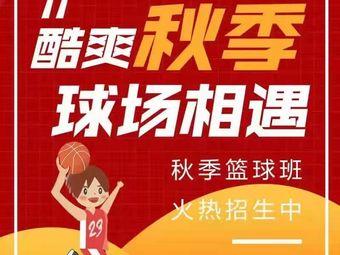 呈康体育少儿篮球训练营(京华广场店)