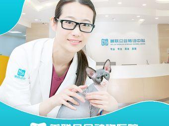 美联众合动物医院(百环分院)
