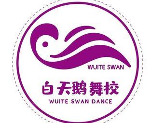 白天鹅舞蹈学校(美景鸿城校区)