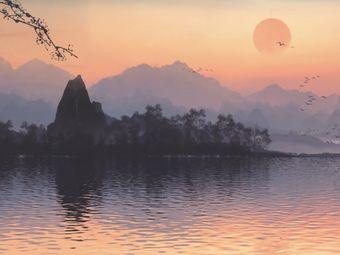 雀江湖•共享茶舍•雀馆