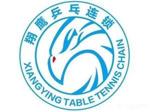 京鹰乒乓培训中心