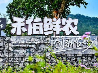 禾伯鲜农创新农场