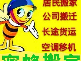 济南小蜜蜂搬家(解放路店)